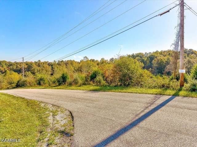 Lot 58 Saddleridge Drive, Speedwell, TN 37870 (MLS #1171387) :: Austin Sizemore Team