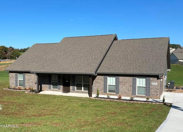 2834 Big Springs Rd, Friendsville, TN 37737 (MLS #1171483) :: Austin Sizemore Team