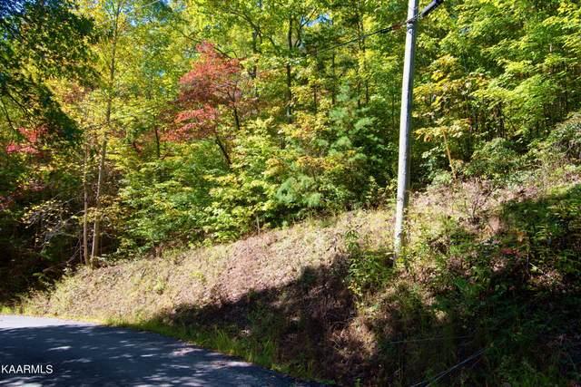 Pine Crest Lane, Sevierville, TN 37862 (#1171549) :: Catrina Foster Group