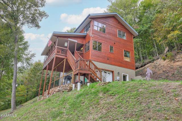 1738 Mountain Shores Rd, New Tazewell, TN 37825 (#1171554) :: Catrina Foster Group