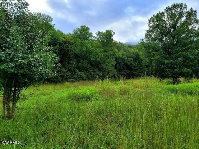 00 County Road 875, Etowah, TN 37331 (#1171652) :: JET Real Estate