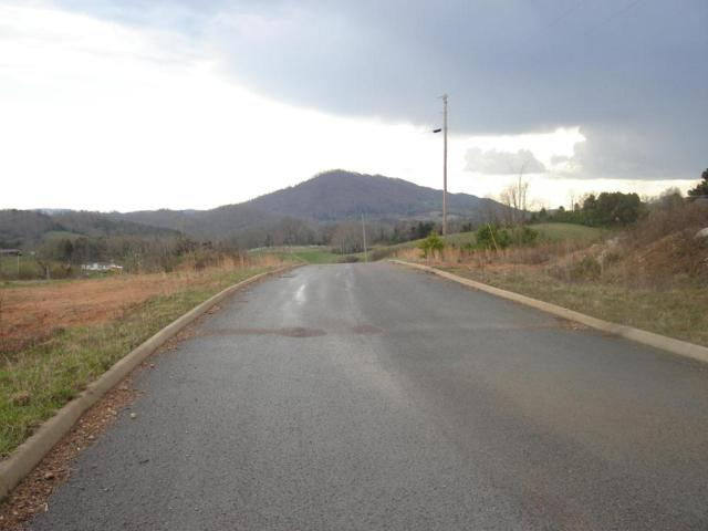 L 14 Elaine Drive, Tazewell, TN 37879 (#866095) :: Billy Houston Group