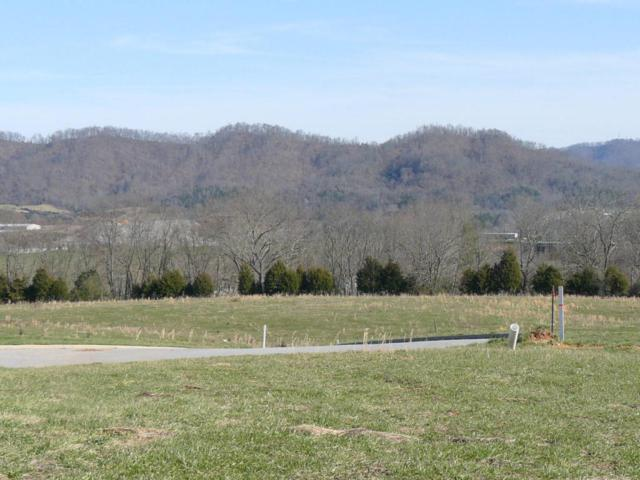 Lot 27 Dudley Lane, Tazewell, TN 37879 (#880283) :: Shannon Foster Boline Group
