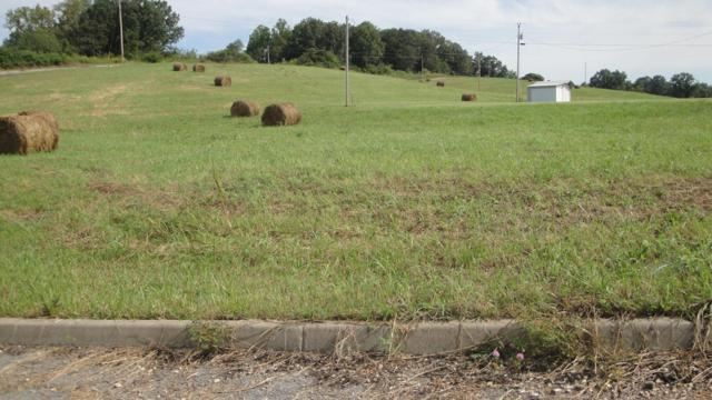L 26 Elaine Drive, Tazewell, TN 37879 (#883930) :: Billy Houston Group