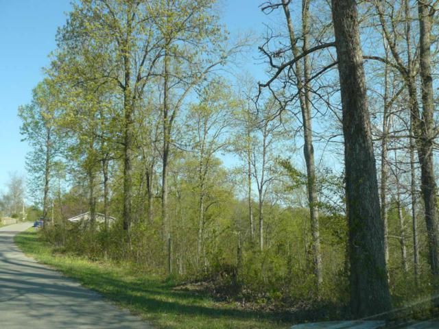 Lot 13 Serrento Lane, New Tazewell, TN 37825 (#884099) :: Billy Houston Group