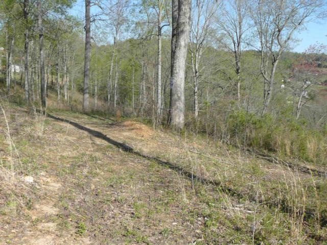 Lots 35-36 Serrento Lane, New Tazewell, TN 37825 (#884109) :: Billy Houston Group