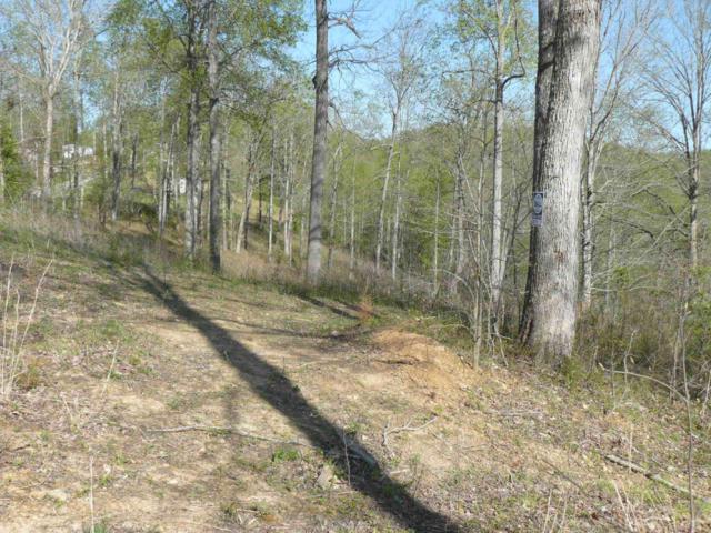 Lots 37-38 Serrento Lane, New Tazewell, TN 37825 (#884114) :: Billy Houston Group