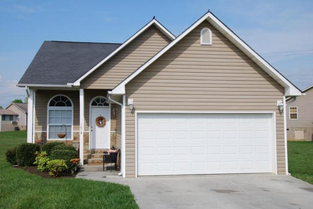 1618 Monte Vista Drive, Sevierville, TN 37862 (#885082) :: Billy Houston Group