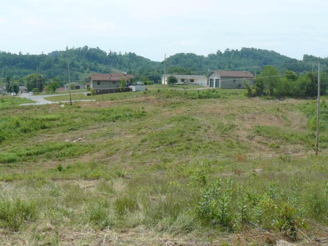 Lots 13-14 Jean Woods Circle, Tazewell, TN 37879 (#891026) :: Billy Houston Group