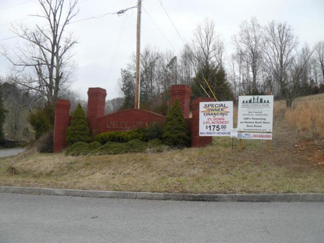 Lot 38 Dudley Circle, Tazewell, TN 37879 (#891311) :: Shannon Foster Boline Group