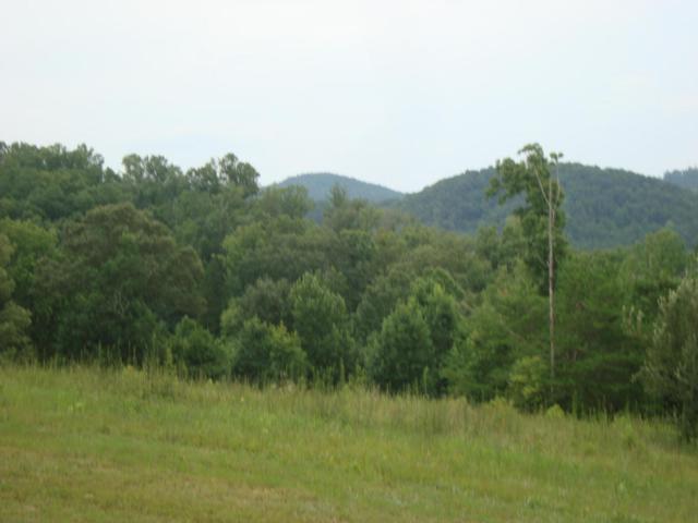 Williams Road, Tellico Plains, TN 37385 (#896139) :: Billy Houston Group
