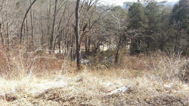 Lot 60 Whispering Court, Bean Station, TN 37708 (#912325) :: Catrina Foster Group