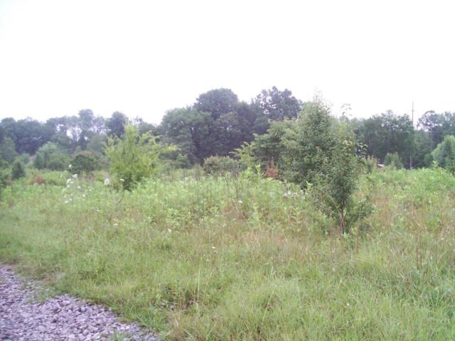 County Road 351, Niota, TN 37826 (#914558) :: Billy Houston Group