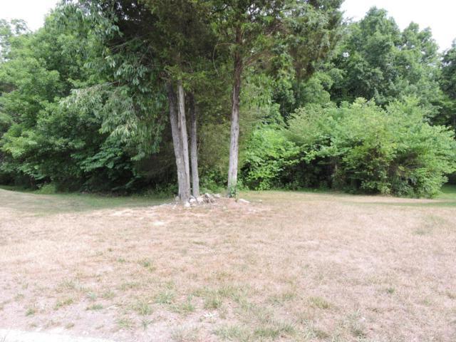 7366 Beech Meadow Lane, Powell, TN 37849 (#930150) :: Billy Houston Group