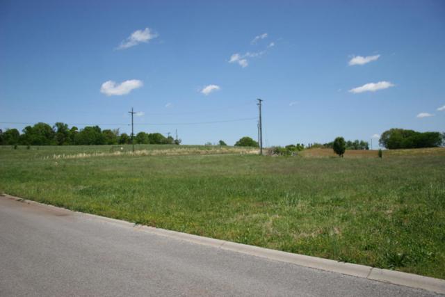 Rockwell Blvd, Madisonville, TN 37354 (#944023) :: Billy Houston Group