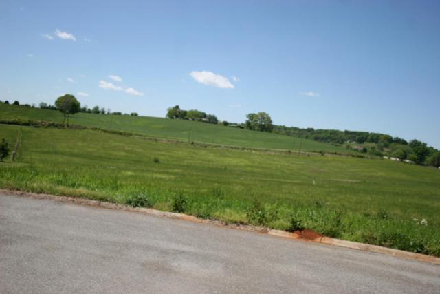 Rockwell Blvd, Madisonville, TN 37354 (#944025) :: Shannon Foster Boline Group