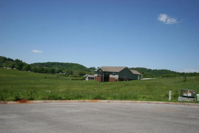Rockwell Blvd, Madisonville, TN 37354 (#944026) :: Billy Houston Group