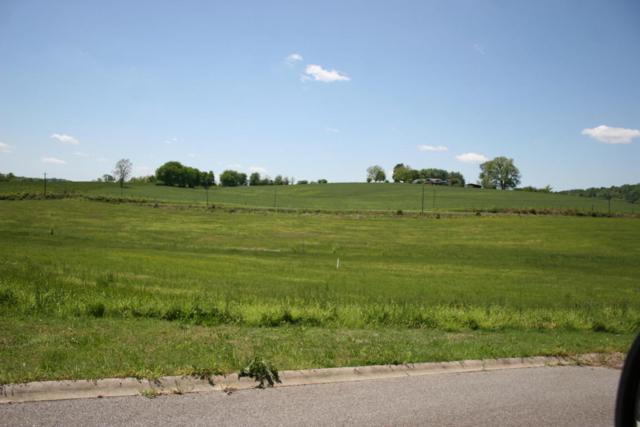 Rockwell Blvd, Madisonville, TN 37354 (#944028) :: Shannon Foster Boline Group