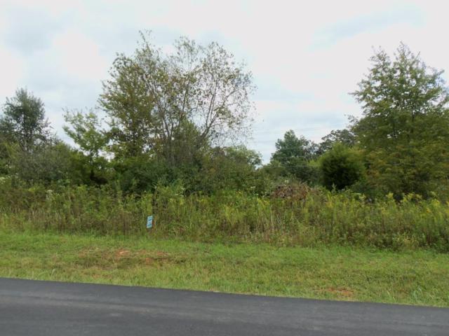 106 Tommotley Drive, Loudon, TN 37774 (#944904) :: CENTURY 21 Legacy