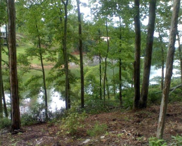 Indian Shadows Drive, Ten Mile, TN 37880 (#949575) :: Billy Houston Group
