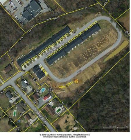 Hazelgreen Way, Knoxville, TN 37912 (#959372) :: Billy Houston Group