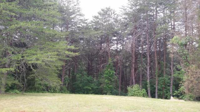 Indian Shadows Drive, Vonore, TN 37885 (#964894) :: Billy Houston Group