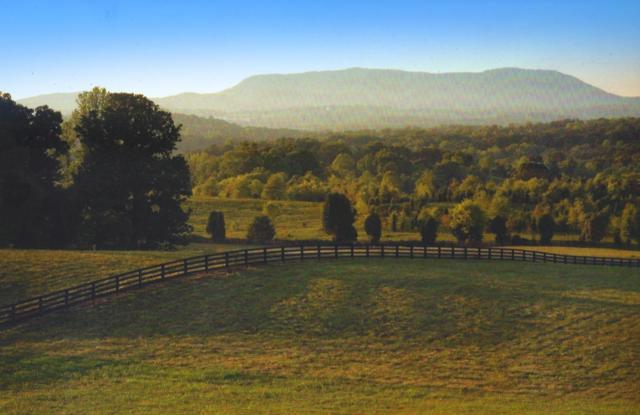 Tralee Way, Strawberry Plains, TN 37871 (#965532) :: Billy Houston Group