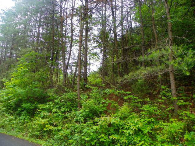 Lot 5 Licking Springs Way, Sevierville, TN 37876 (#965595) :: Billy Houston Group