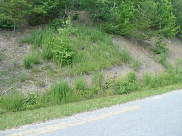 Lot 818 Wildcat Hollow Rd, Tazewell, TN 37879 (#967152) :: Billy Houston Group