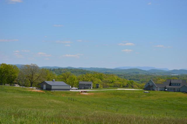 Lot 27 Ranch Rd, Blaine, TN 37709 (#969360) :: Billy Houston Group