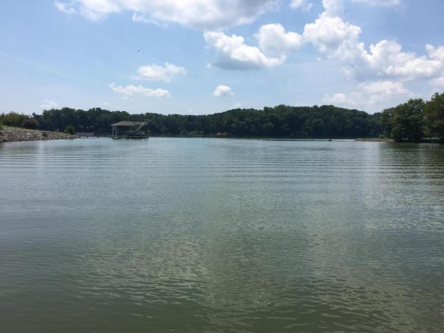 Colonial Harbor Drive, Louisville, TN 37777 (#971760) :: Billy Houston Group