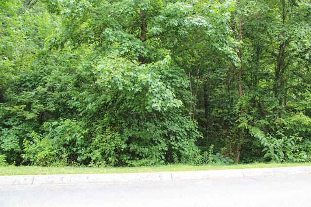 Lot 83 Smoky Cove Rd, Sevierville, TN 37876 (#975755) :: Billy Houston Group