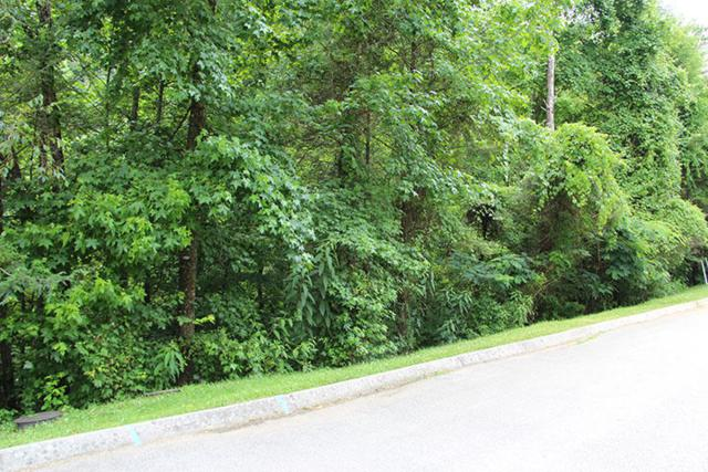 Lot 84 Smoky Cove Rd, Sevierville, TN 37876 (#975757) :: Billy Houston Group