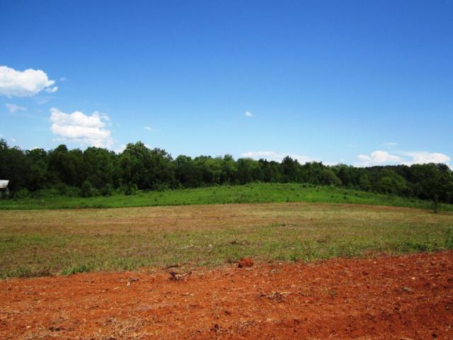 Lot 14- Mountain Vista Trail Rd, Dandridge, TN 37725 (#975866) :: Shannon Foster Boline Group
