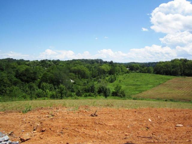 Lot 18- Mountain Vista Trail Rd, Dandridge, TN 37725 (#976048) :: Shannon Foster Boline Group