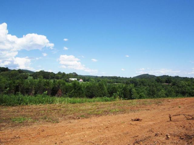 Lot 19- Mountain Vista Trail Rd, Dandridge, TN 37725 (#976050) :: Shannon Foster Boline Group