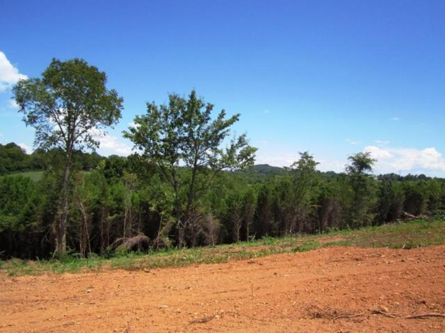 Lot 21- Mountain Vista Trail Rd, Dandridge, TN 37725 (#976068) :: Billy Houston Group