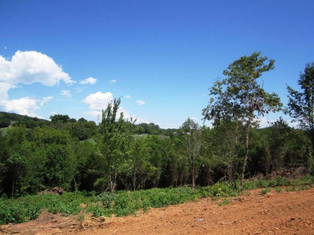 Lot 23- Mountain Vista Trail Rd, Dandridge, TN 37725 (#976072) :: Billy Houston Group