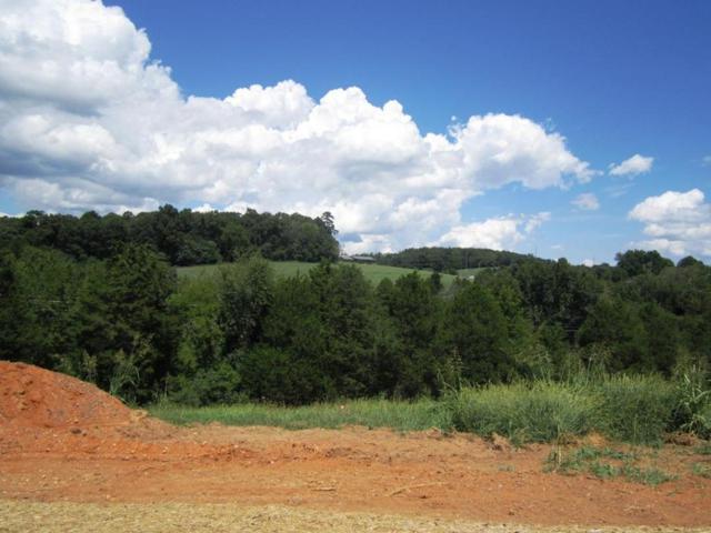 Lot 24- Mountain Vista Trail Rd, Dandridge, TN 37725 (#976078) :: Shannon Foster Boline Group