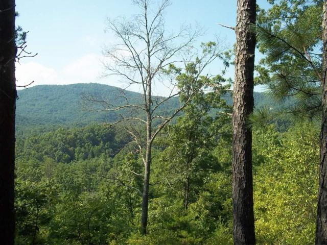 Lot 65 Tolliver Tr, Townsend, TN 37882 (#978187) :: Billy Houston Group