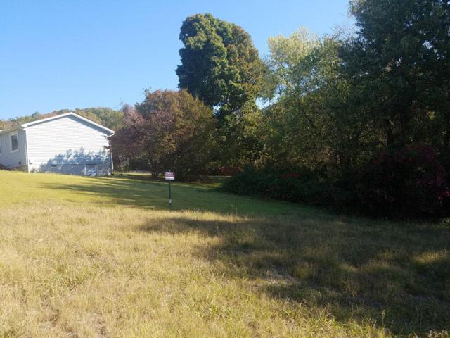 Lot 45 Scenic Drive, Bean Station, TN 37708 (#982541) :: Billy Houston Group
