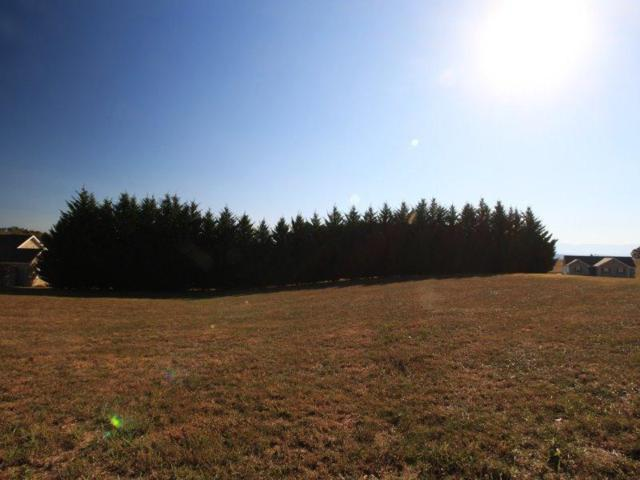 Lot 20 Country Way Rd, Vonore, TN 37885 (#984740) :: Billy Houston Group