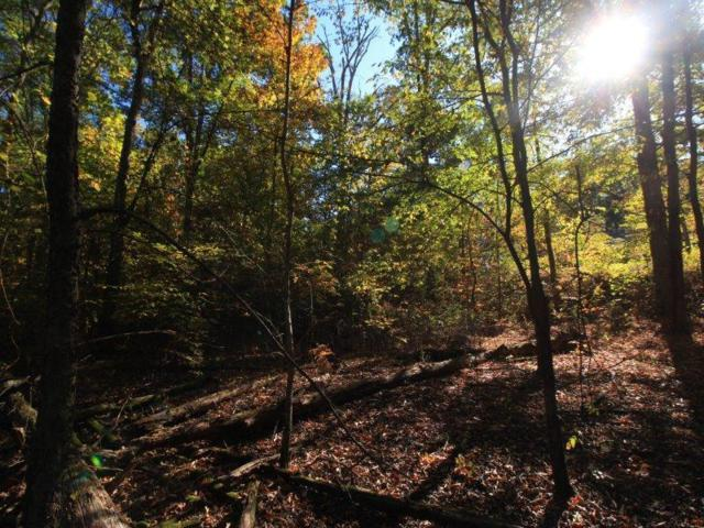 Country Way Rd. Lot 30 And 31 Rd, Vonore, TN 37885 (#984741) :: Billy Houston Group