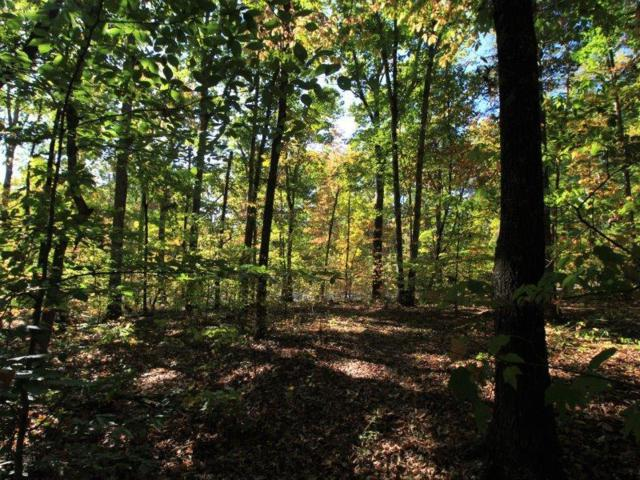 Lot 43 Country Way Rd, Vonore, TN 37885 (#984744) :: Billy Houston Group