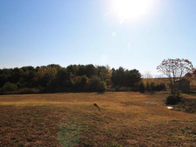 Lot 59 Country Way Rd, Vonore, TN 37885 (#984747) :: Billy Houston Group