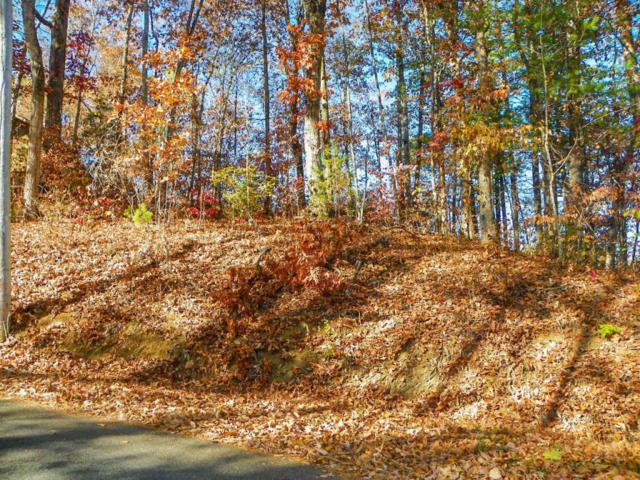 Lot  4 Sunrise Blvd, Sevierville, TN 37862 (#984772) :: Billy Houston Group