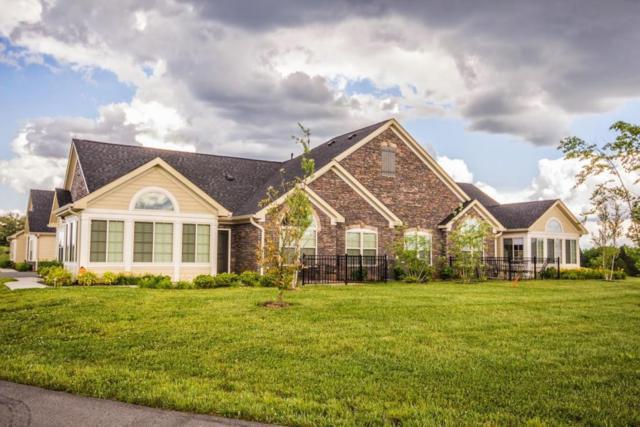 924 Pryse Farm Blvd, Knoxville, TN 37934 (#986269) :: Billy Houston Group