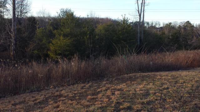 3841 Lt 15 Hillside Terrace Lane, Knoxville, TN 37924 (#987644) :: Billy Houston Group