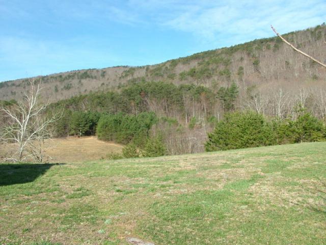 106 Forest Hill Lane, Evensville, TN 37332 (#987718) :: Billy Houston Group