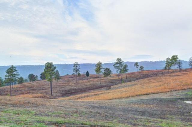 Lot 14 Sneed Rd, Dayton, TN 37321 (#989259) :: Billy Houston Group